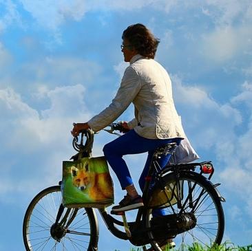 La mobilité : de fortes attentes locales